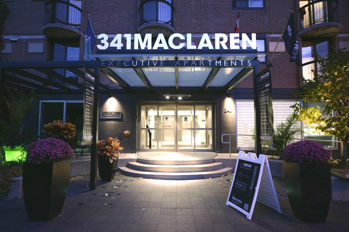 341 Maclaren St Executive 1 Bedroom Bachelor Apartments For Rent